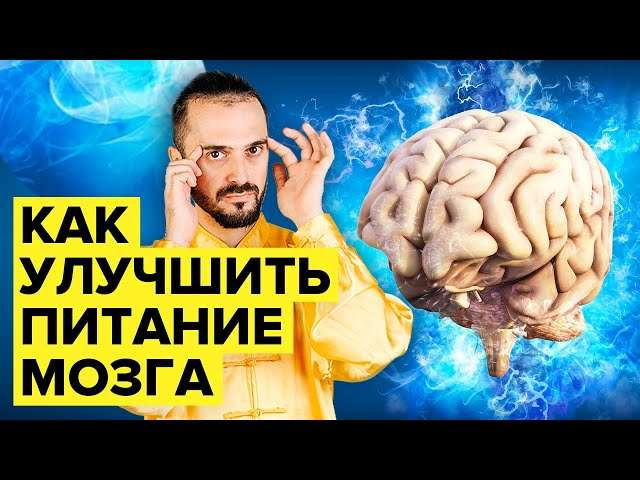 Мозговое кровообращение. Улучшаем питание мозга